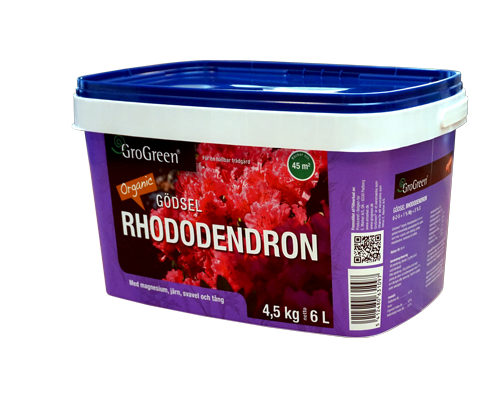 Natural Rhododendron